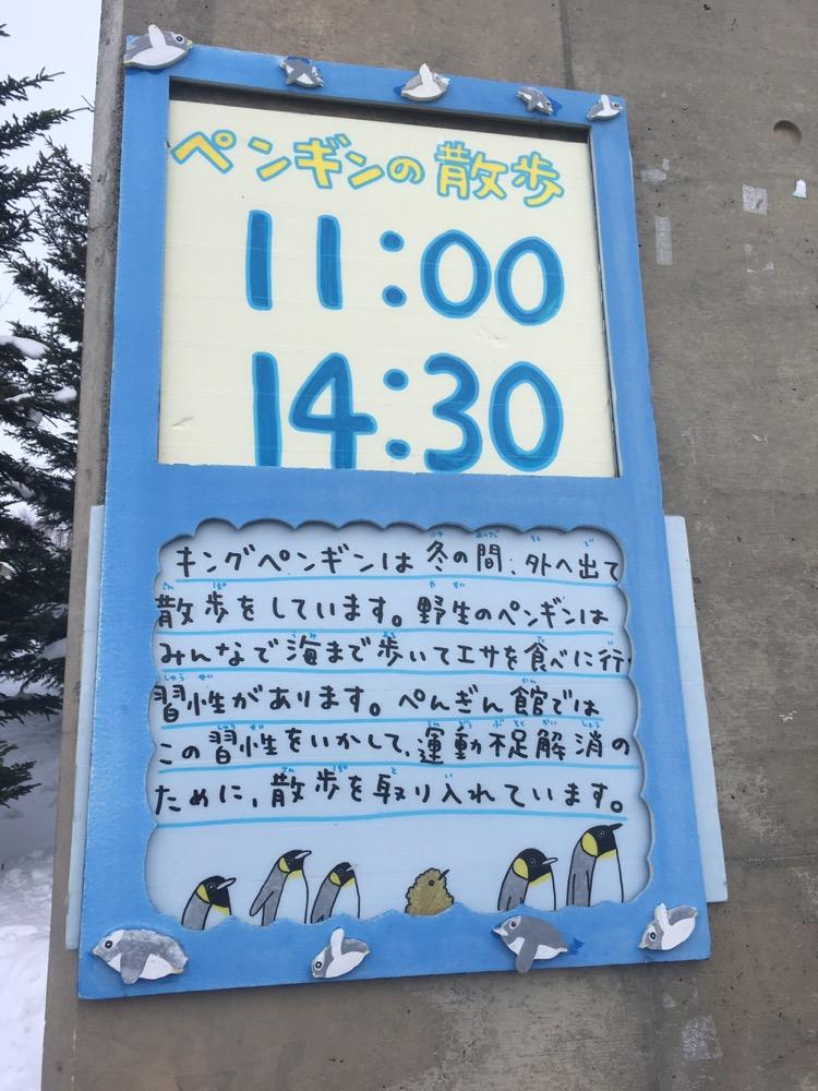 ペンギンのお散歩のタイムスケジュール