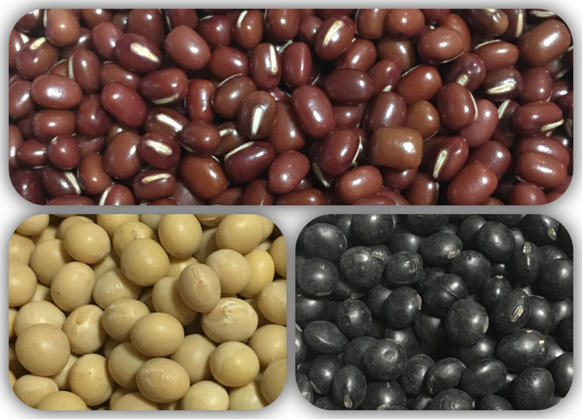 小豆。黄大豆。黒大豆