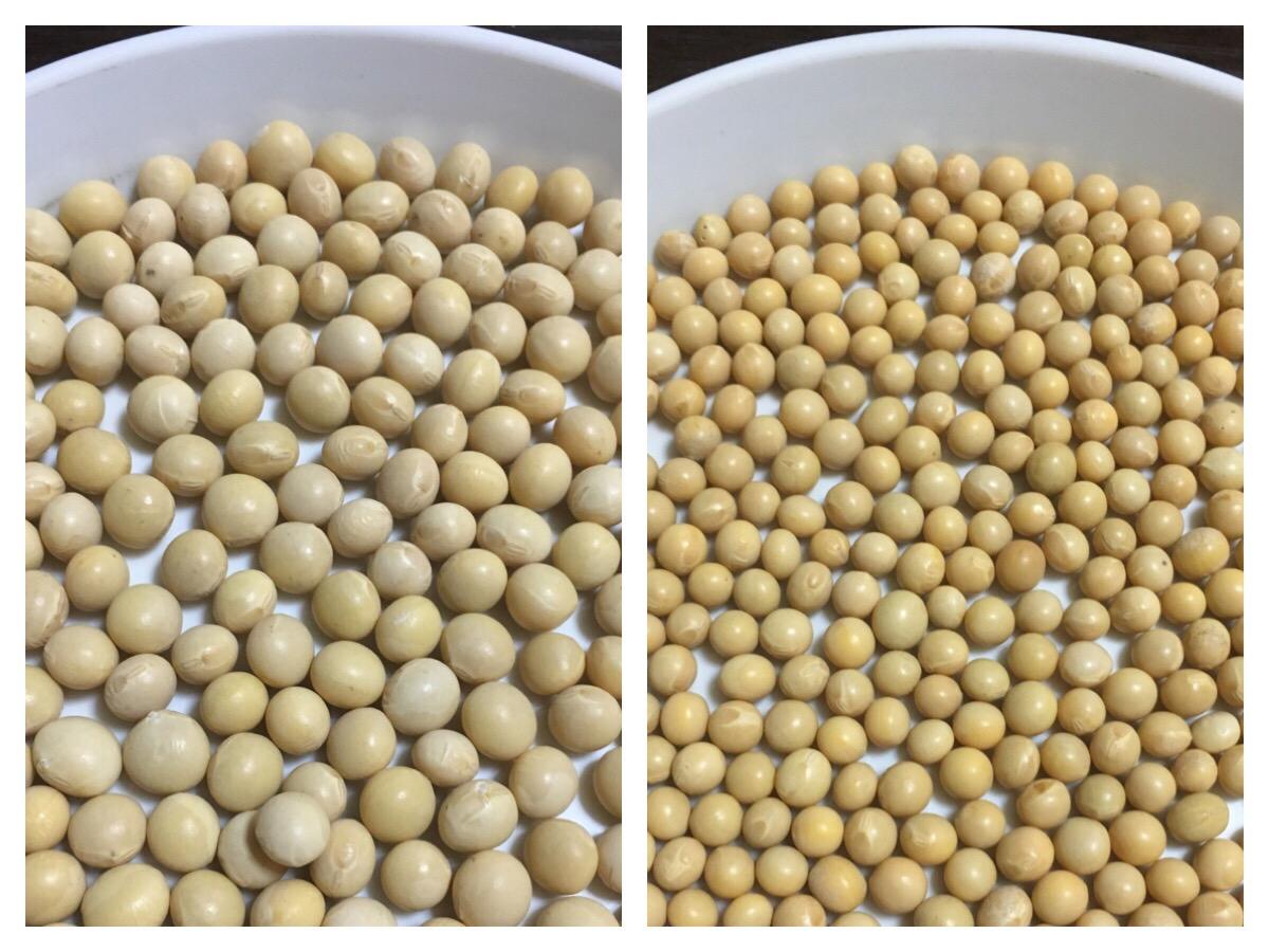 2種類の大豆