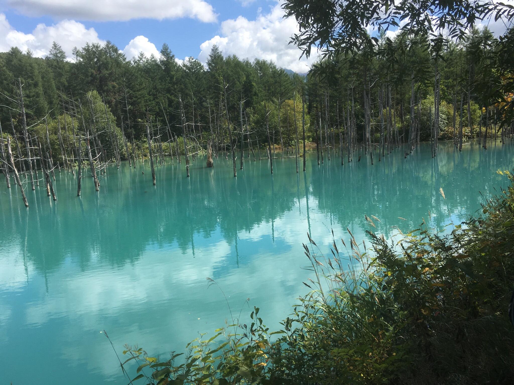 青い池の無風時