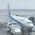 北海道旅行の安い時期っていつ?徹底比較どうしたら旅費を抑えられるか!
