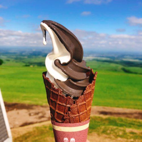ナイタイテラスのソフトクリーム