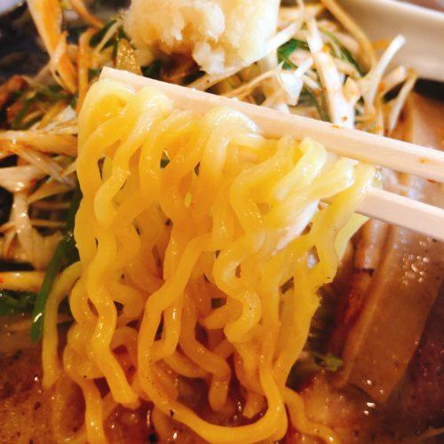麺屋おざわの味噌ラーメンの麺を箸で持った