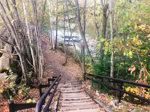美瑛の青い池への下り階段