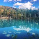 【美瑛の青い池】誰でもインスタ映えに!/北海道旅行の超人気スポット‼