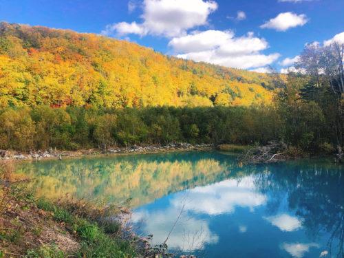 美瑛の青々とした青い池に山が映った