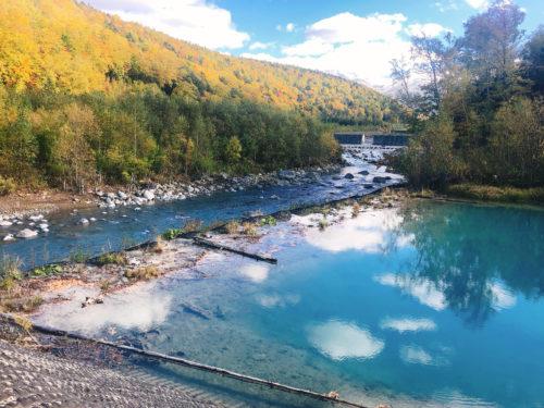 青い池の堰堤