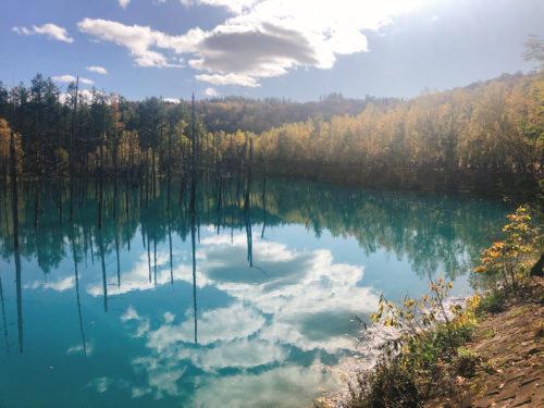 青い池の全体像の写真