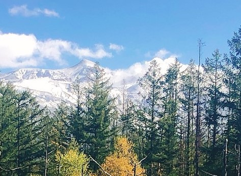 十勝岳に雪がかぶった状態