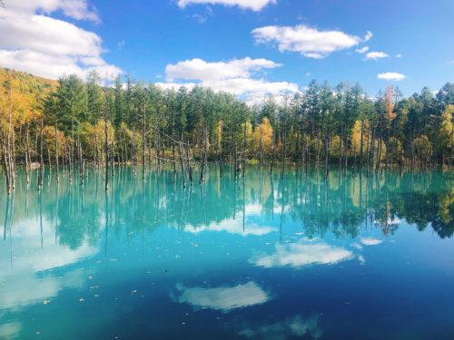 青い池の山が観える