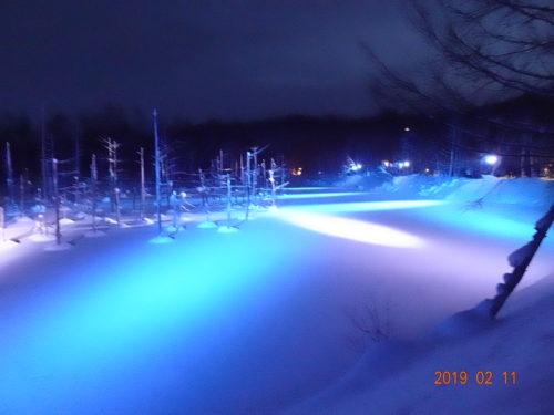 冬の青い池 ライトアップ