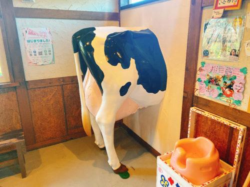 牛小屋のアイスの店内の壁に等身大の牛の人形が首を突っ込んでいる様子