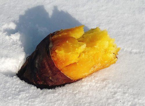 雪の上の焼き芋