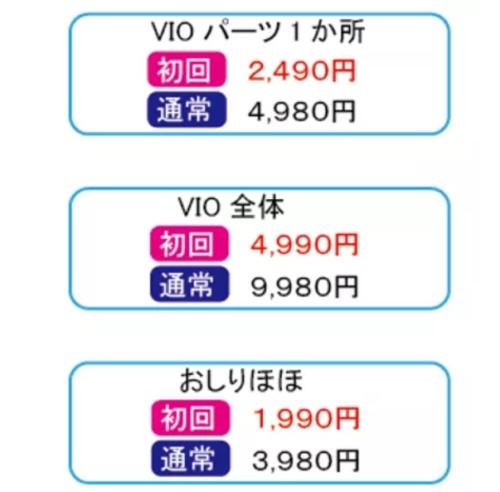 札幌脱毛サロンBLOW(ブロウ)のVIO料金表