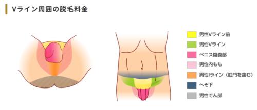 札幌中央クリニックメンズのVIO脱毛可能部位
